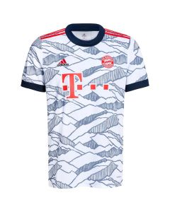 Front of the Bayern 21-22 Third Jersey.