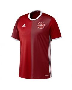 Denmark Kids Home Football Shirt 2016/17 (9-10 Years)