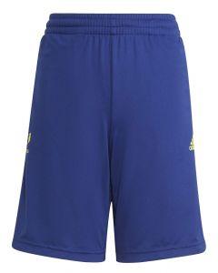 Lionel Messi Kids Blue Training Shorts