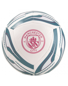 Man City Crest On The Icon Football