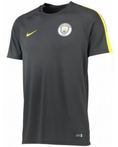 Manchester City Squad Training Top 2016-17 (Grey)
