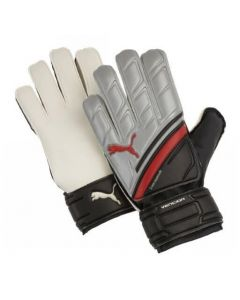 Puma Silver Vencida Goalkeeper Gloves