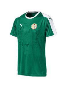 Senegal Puma Away Shirt 2018/19 (Adults)