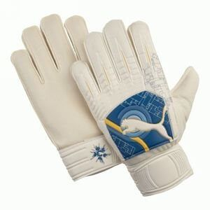 Puma Powercat 4.10 Goalkeeper Gloves