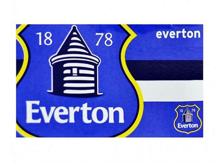 Everton Horizon Flag