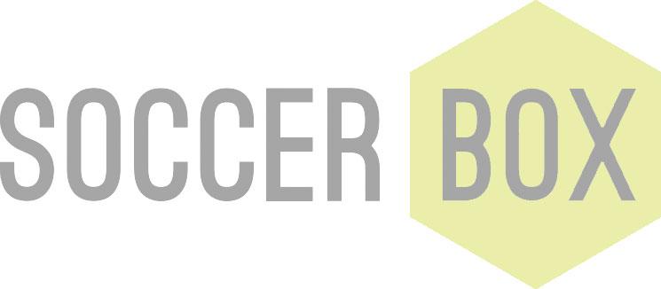 Back of Brazil Prestige Football 2014