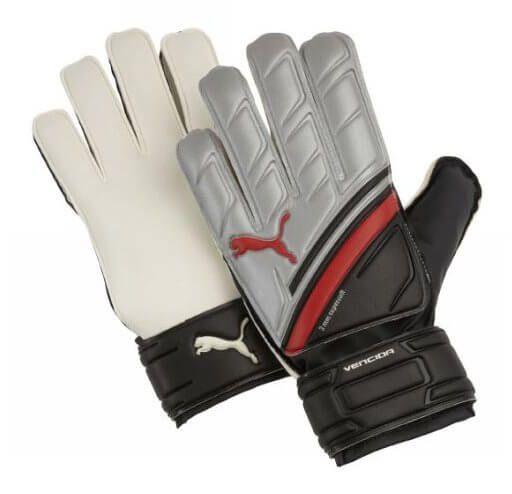 Puma Silver Vencida Goalkeeper Gloves