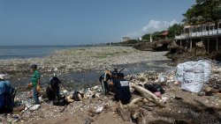 Environmental Impact of Football Parley Oceans Cleanup